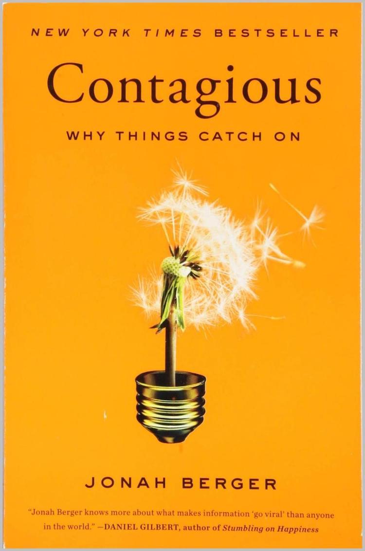Contagious Marketing Book
